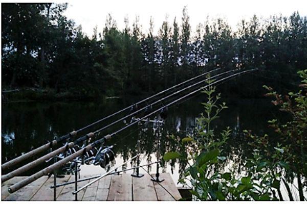 Pêche à la Carpe dans l'Oise