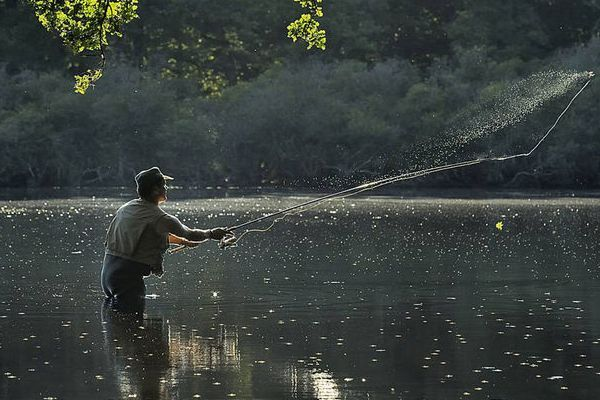 Pêche aux Carnassiers dans les Deux Sèvres