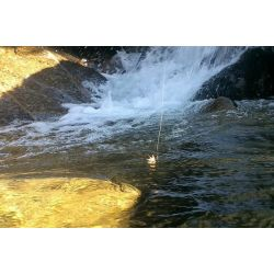 Pêche en Ardèche