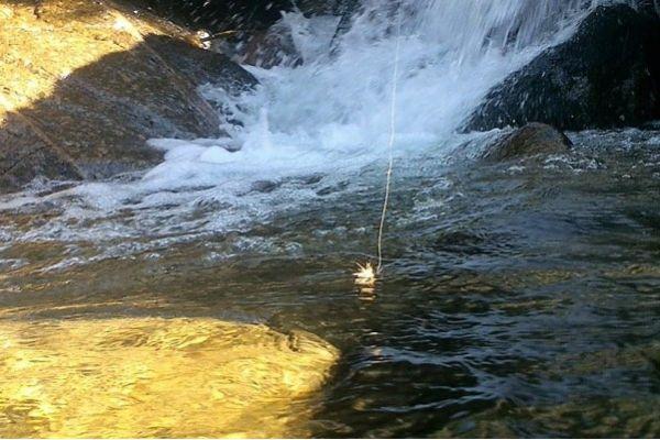 Pêche à la Mouche en Ardèche