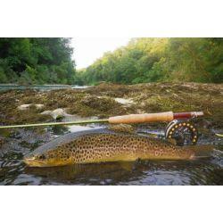 Pêche en Haute Loire