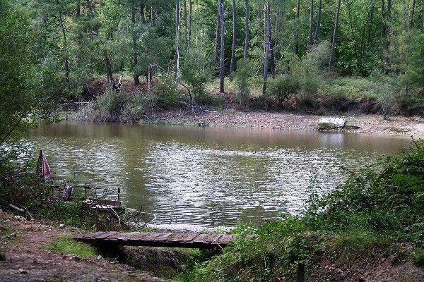 Pêche à la carpe dans l'Indre et Loire