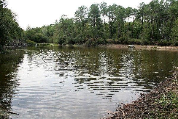 Pêche aux Carnassiers en Indre et Loire